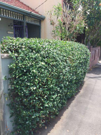 After hedging