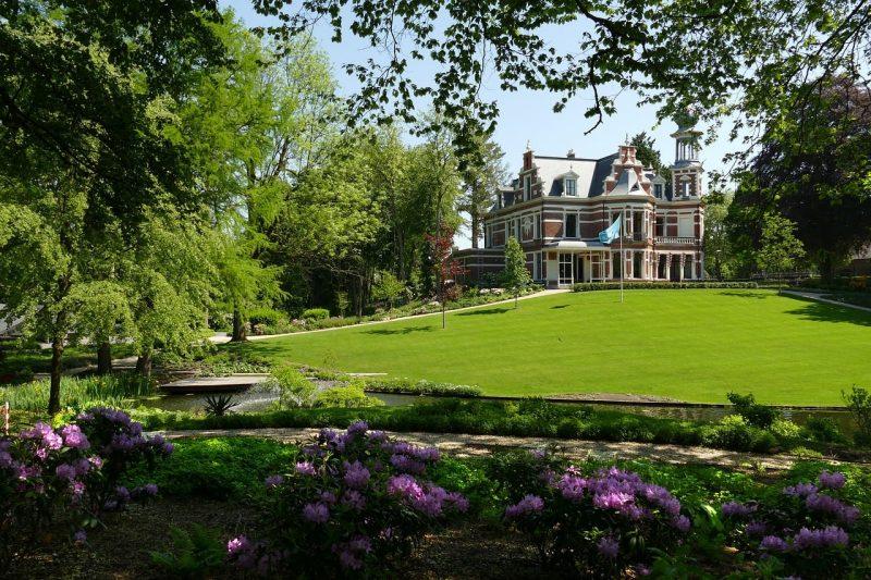 landscaping for huge backyard