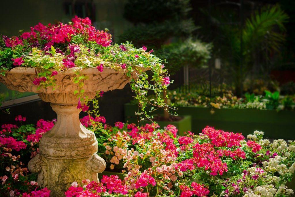 garden maintenance plan