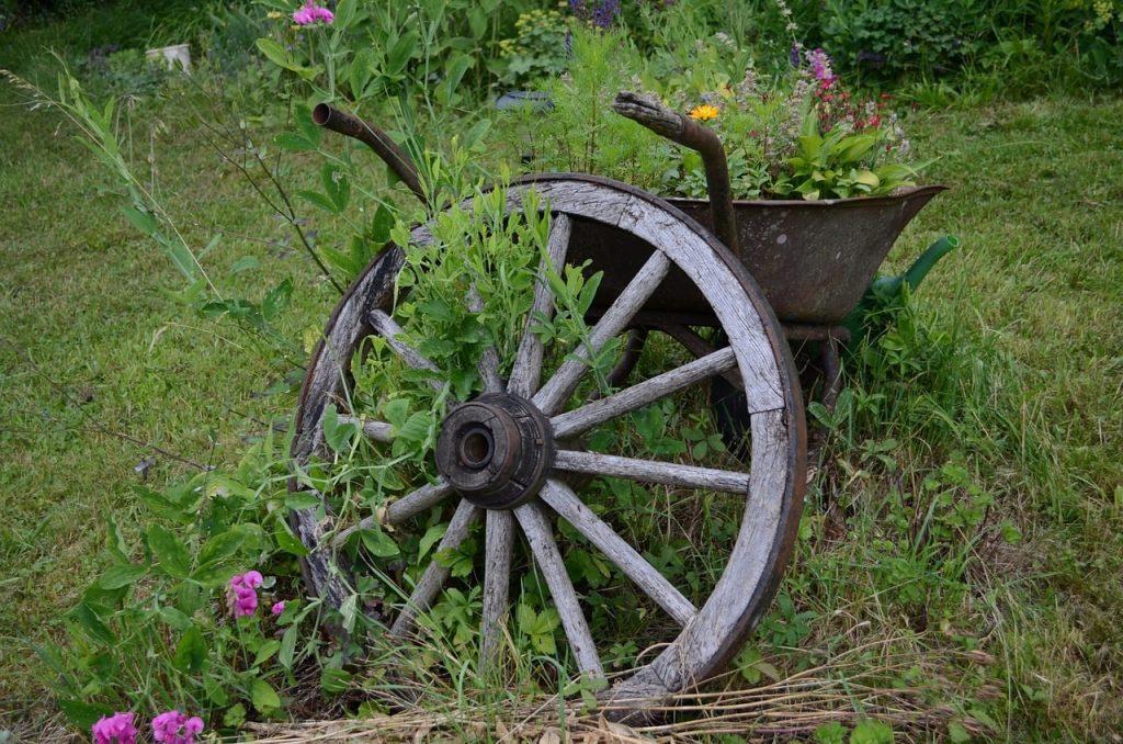 wheelbarrow in low maintenance garden